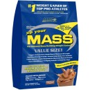 Up Your Mass - 4536 grams
