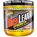 CreaLean Strength, 100% Pure Creatine - 500 grams